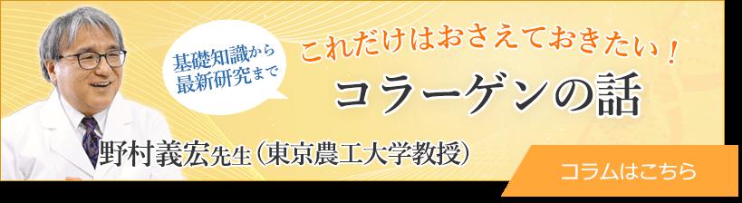 基礎知識から最新研究まで 野村義宏先生(東京農工大学教授)の これだけはおさえておきたい!コラーゲンの話